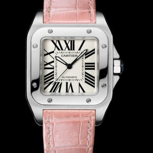 Cartier [NEW] Santos 100 Unisex Watch W20126X8 (List Price: HK$47,200)